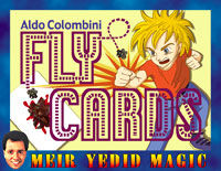 Fly Cards (Aldo Colombini)