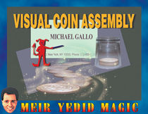 Visual Coin Assembly (Michael Gallo)