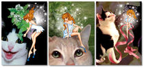 Misty The Cat Fairy Greeting Card Series 3-Pack