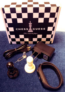 Chess Guess (Chris Ramsay)