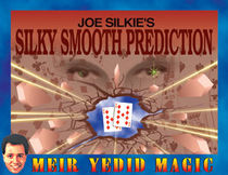 Silky Smooth Prediction (Joe Silkie)